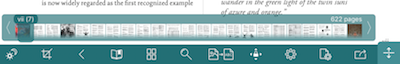 GoodReader Toolbar Screen Capture