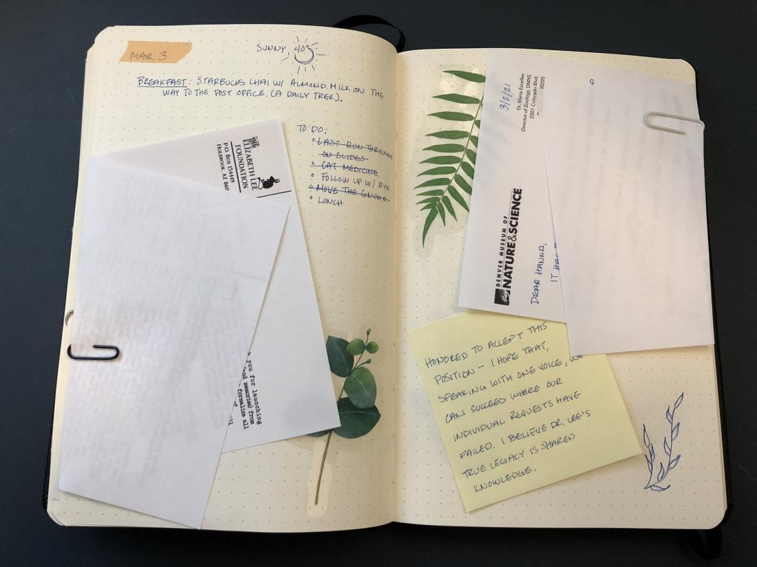Field Guide To Memory journal Page (letters)